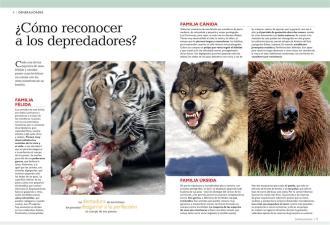 Mundo Animal 3D (1)