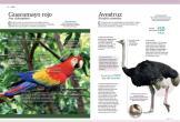 Mundo Animal 3D (2)