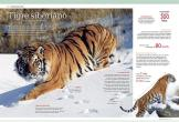 Mundo Animal 3D (3)